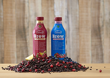 Brew products bottle placed over cranberries
